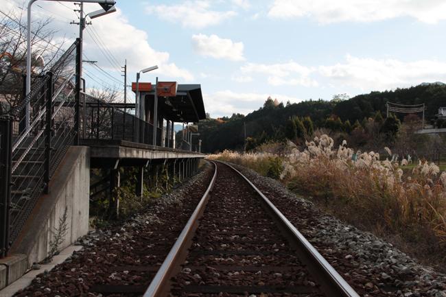 道の駅 歓遊舎ひこさん 駅