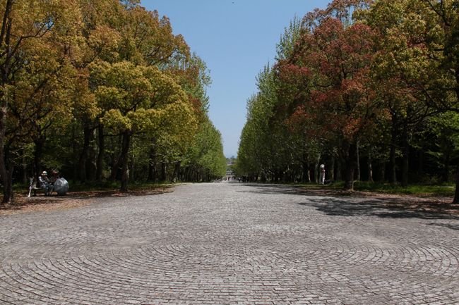 万博公園 散歩