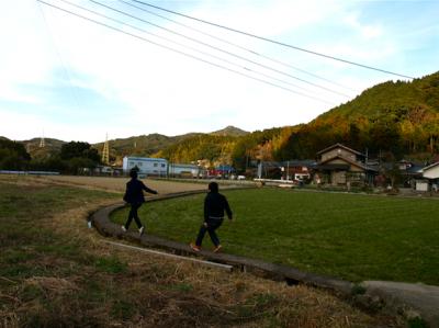 田んぼ 走る