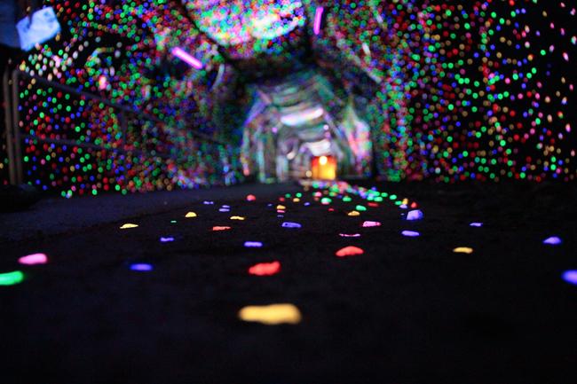 鯛生金山 トンネル