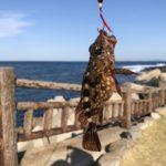 【佐賀ドライブ】呼子・唐津で釣り初心者3人はじめての釣り