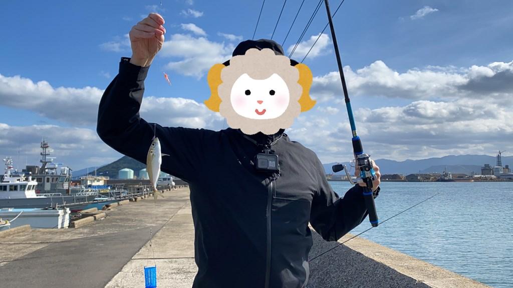 唐津 漁港 釣り
